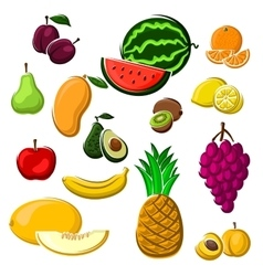 Juicy fresh fruits set in cartoon style vector image vector image