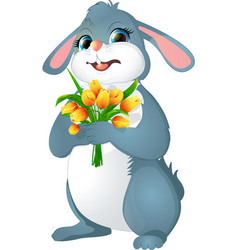 rabbit with yellow tulips vector image