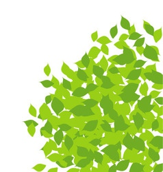 Design element with spring leaves vector