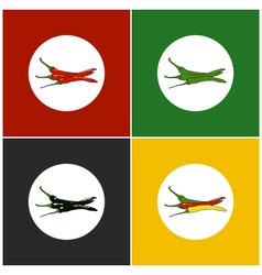 Set of icons hot chili pepper vector