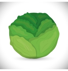 Vegetables icon design vector