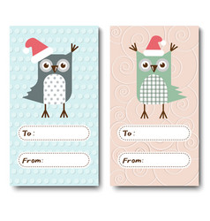 A set of christmas cards invitations with owls vector