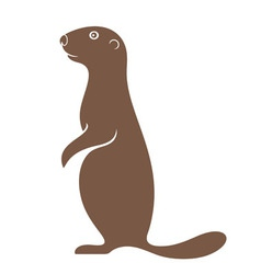 Gopher vector image