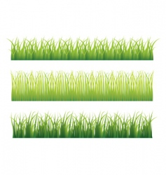 grass borders vector image