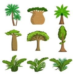 Jungle Trees And Plants Set vector image vector image