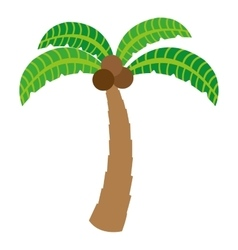 Tree palm summer isolated icon vector