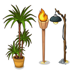 Interior palm in pot torch and electric lantern vector