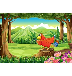 A forest with a colorful bird standing above the vector