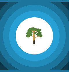 Isolated forest flat icon wood element can vector