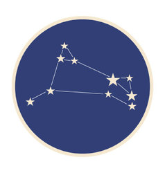 Constellation aries vector