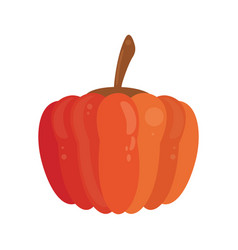 Pumpkin food healthy image vector