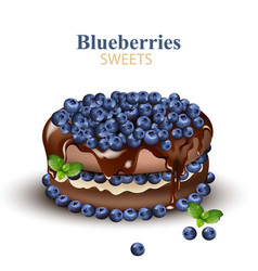 blueberries chocolate cake realistic vector image vector image