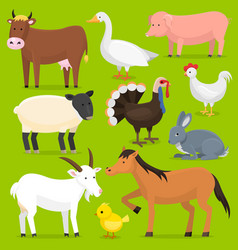 farm animals birds farmland set vector image