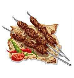 tasty kebabs vector image vector image