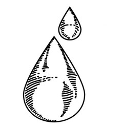 water drop sketch vector image vector image