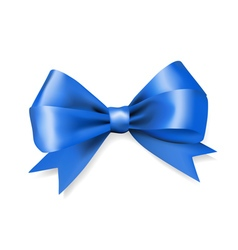 Blue silky bow ribbon vector