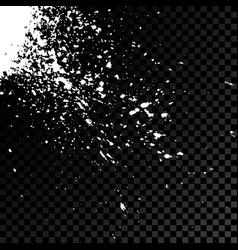 acrylic white explosion paint splatter small vector image