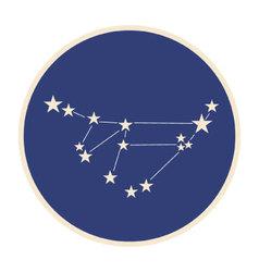 Constellation capricorn vector
