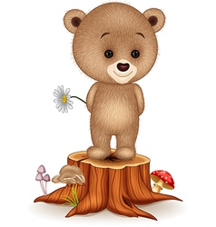 Cute little bear on tree stump vector image