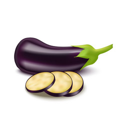 realistic detailed 3d eggplant and slice vector image vector image