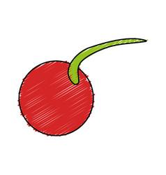 Delicious cherry fruit icon vector