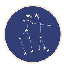 Constellation gemini vector