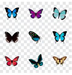 Realistic papilio ulysses purple monarch common vector
