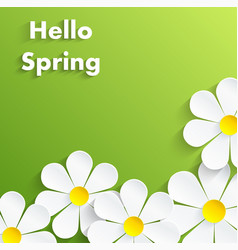 beautiful spring flowers green background vector image vector image