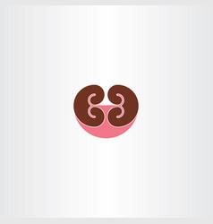 Kidney symbol vector