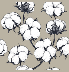 seamless pattern with cotton plants vector image