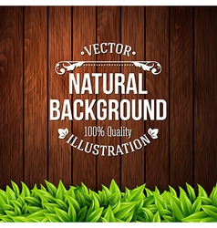 Natural background with wooden planks and leaves vector