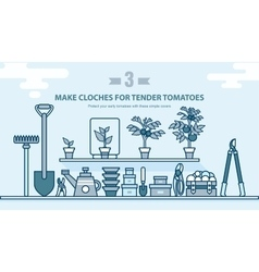 Set garden tools seedling tomatoes on the shelf vector