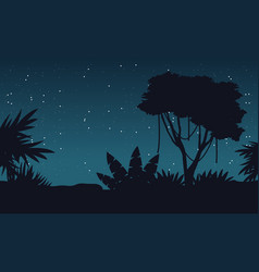 at night jungle with tree silhouette landscape vector image