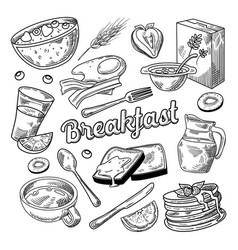 healthy breakfast hand drawn doodle food vector image vector image