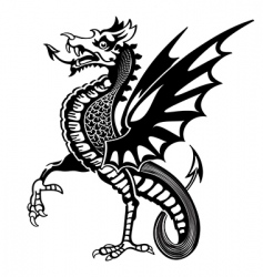 medieval dragon vector image