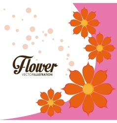 Flower of garden design vector