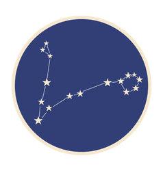 Constellation pisces vector