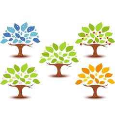 Set of trees in different seasons vector image