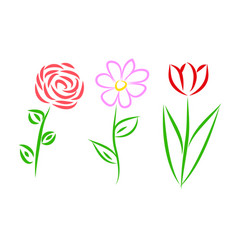 three flowers set vector image vector image