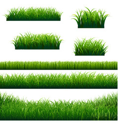 Green grass borders big collection vector