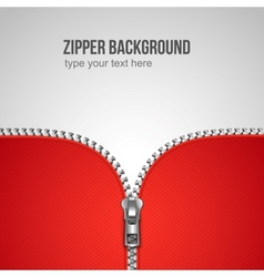Zipper background vector