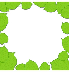 Green leaves frame on the white dropping shadow vector