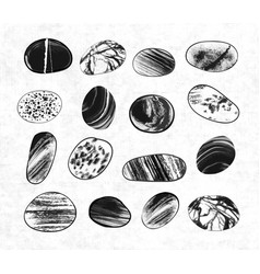 collection of textured pebble stones hand drawn vector image vector image