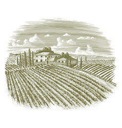 Woodcut vintage italian vineyard vector