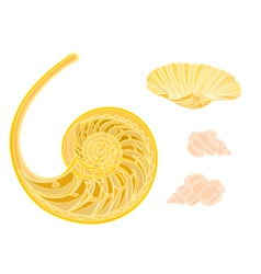 Collection marine life seashells vector