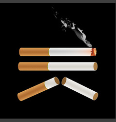 Cigarette burning with smoke vector