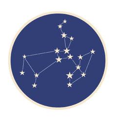 Constellation sagittarius vector