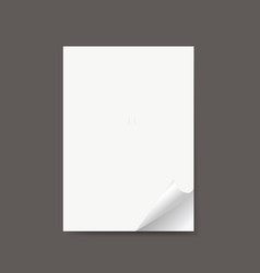 isolated realistic empty paper banners with vector image vector image