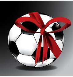 Sports ball gift vector image vector image