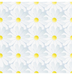 Spring background seamless pattern white chamomile vector